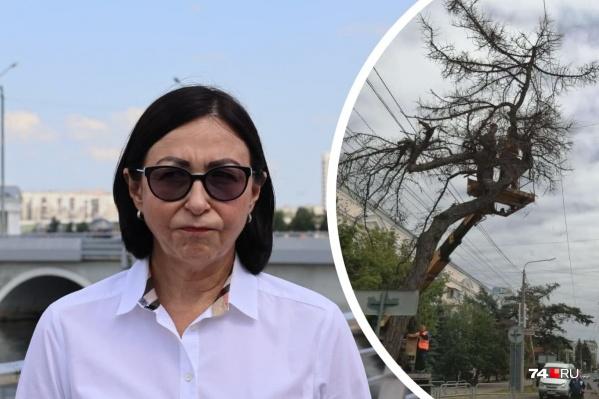 Вопрос о наделавшем шуму спиле векового дерева в центре города пришелся Наталье Котовой не по душе