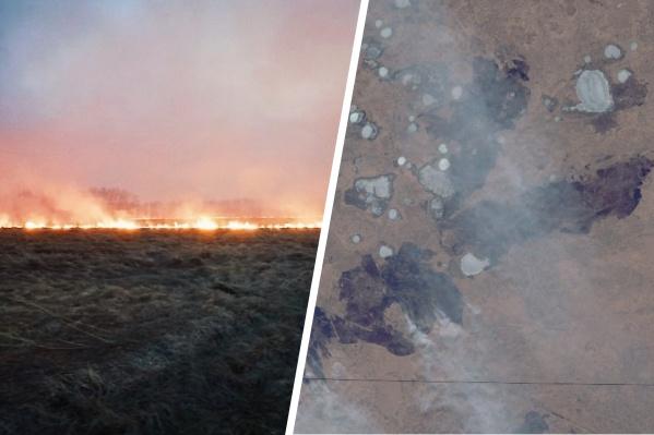 В Ишимском районе крупный пожар. Его видно даже со спутниковых снимков