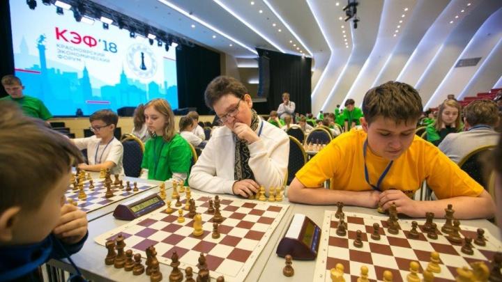 Участники КЭФ сразятся в шахматном турнире