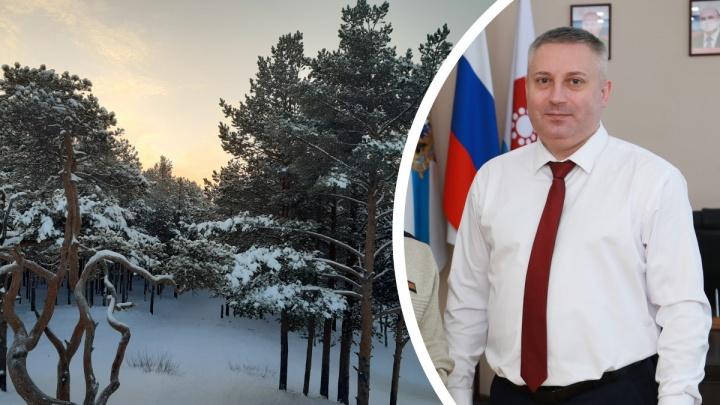 Игорь Скубенко ответил, вырубят ли сосновый бор на Яграх ради канализации