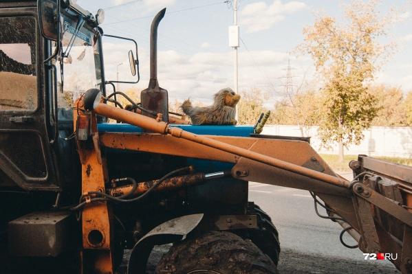 Трактор многодетного отца, фермера стоит на штрафстоянке с весны. До сих пор мужчине не удалось заполучить свою сельхозтехнику обратно