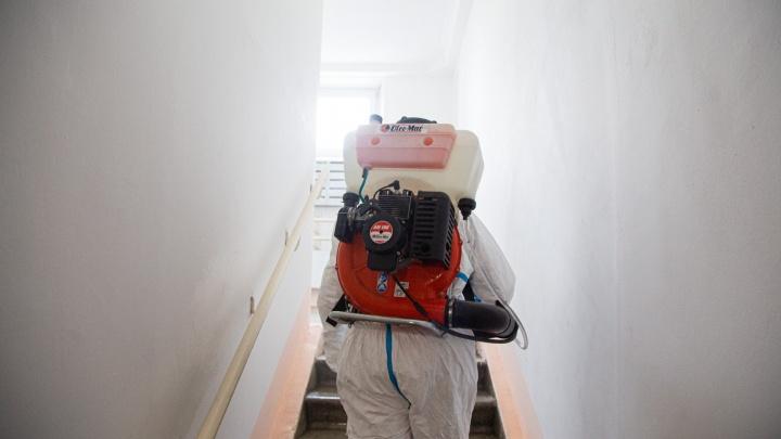 Южноуральцы оставили без крупных сумм пенсионеров, предлагая им обработку квартир от коронавируса