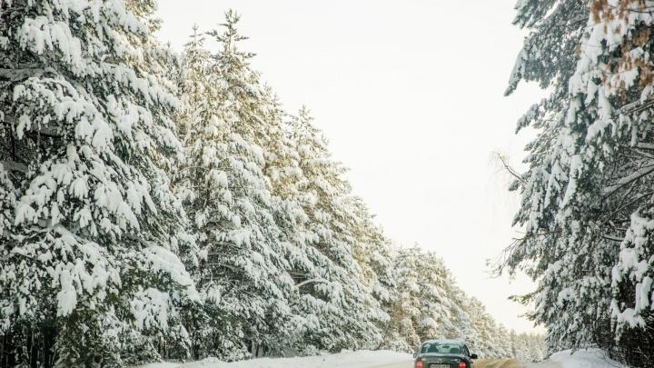 Чтобы не замерзнуть в обледеневшей машине: что делать, если заглохли на дороге в лютый холод
