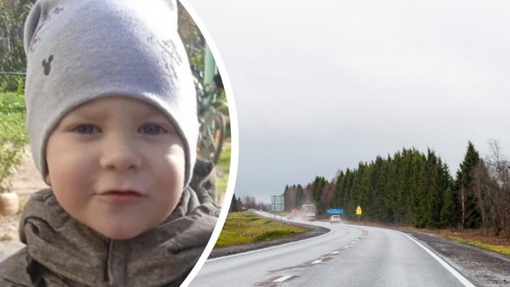 «Увела незнакомая женщина»: в Ярославской области пропал 3-летний мальчик