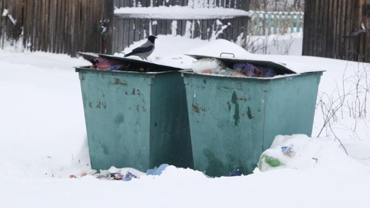 Минприроды не отстояло в суде завышенный норматив по мусору в Архангельской области