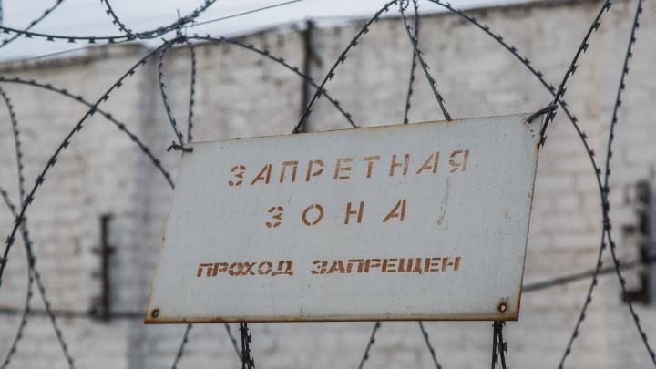 В Волгограде пьяный мужчина до смерти избил родную мать