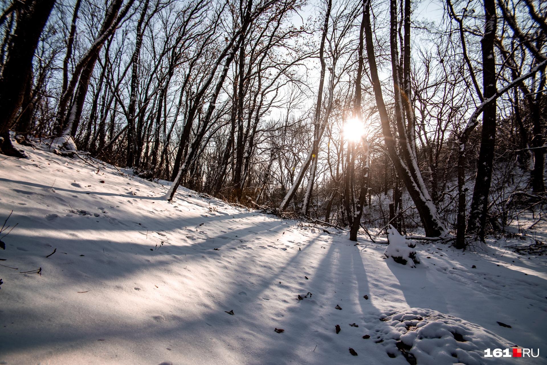 На территории заказника есть все виды ландшафтов Ростовской области