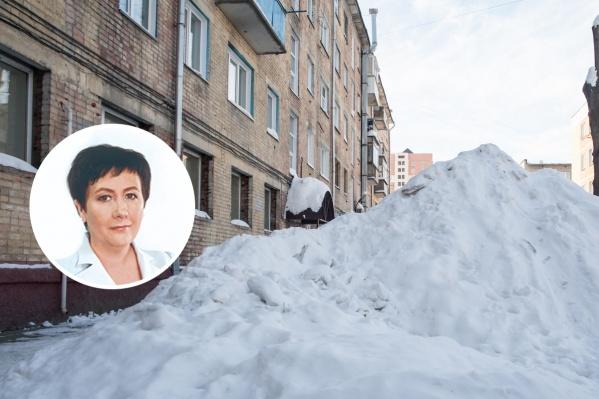Новосибирец потребовал у депутата почистить его двор, а на отказ предложил разобраться с чисткой снега во всём городе