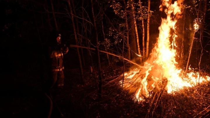 «Хотели избавиться от старых шин, а сожгли лес?» Волонтер нашел возможное место, откуда заполыхала Волчиха