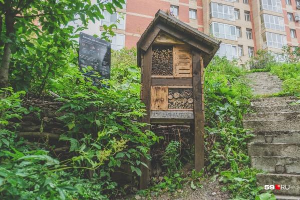 За годы Поваренный лог превратился в Сад соловьев