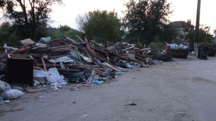 «Мы сгореть должны, чтобы на нас обратили внимание?»: поселок на севере Волгограда погряз в залежах мусора