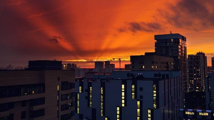 Розово-алое небо: любуемся потрясающими фото заката в Тюмени