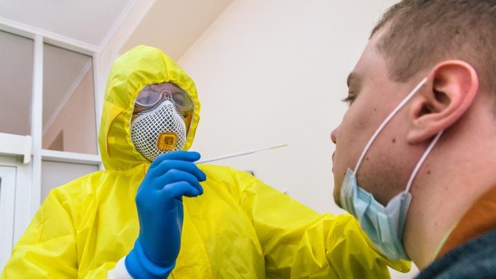 А есть ли коронавирус? Где и почем можно сдать ПЦР-тест в Самаре
