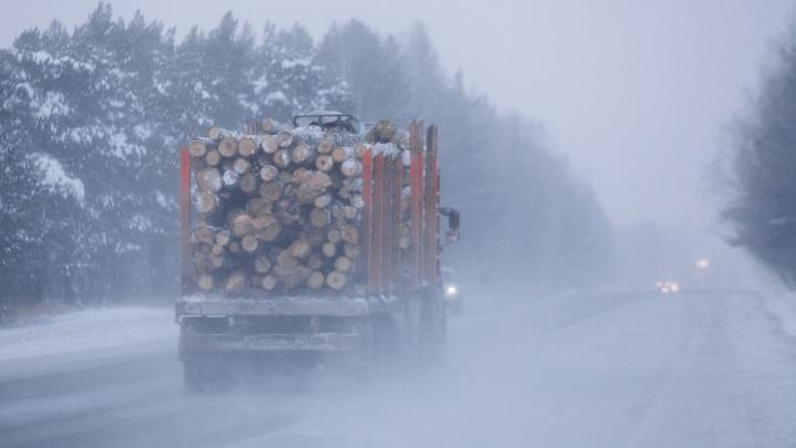 Из-за сильного бокового ветра ограничили движение на участке трассы Тюмень — Омск