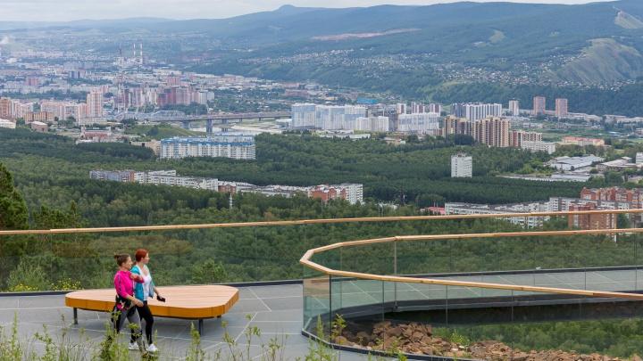 Глава агентства туризма ответила на обвинения в уничтожении деревьев на Николаевской сопке