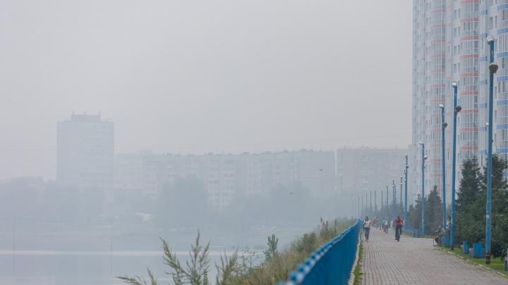 Превышение в 60 раз по взвешенным частицам: онлайн про задымление Красноярска