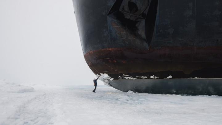 8 морозных кадров в разгар жары: Слава Степанов добрался до Северного полюса