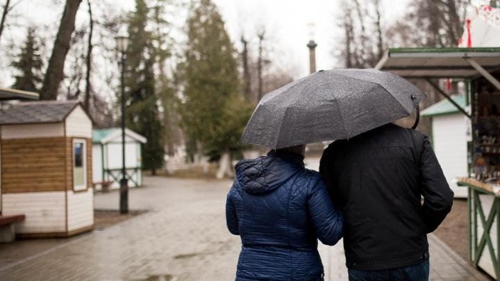 Суровая осень наступит внезапно: в Ярославле резко похолодает и город зальет дождями
