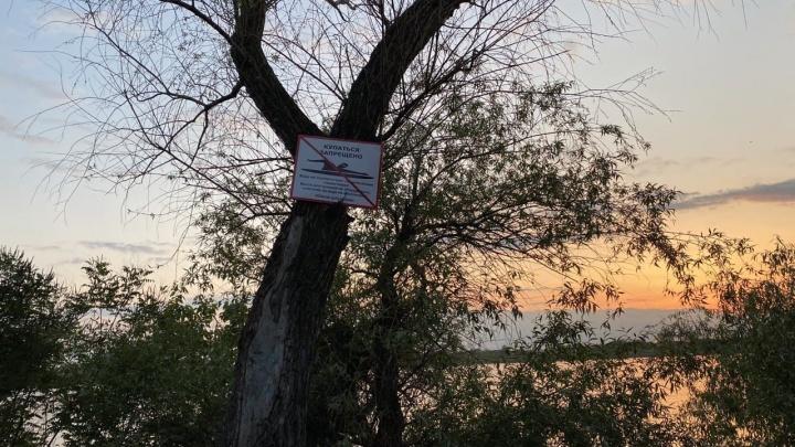 Краснодарцам напомнили, почему нельзя купаться в реке Кубани