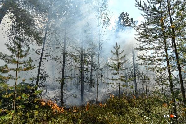 Один из крупных пожаров — в районе озера Глухое