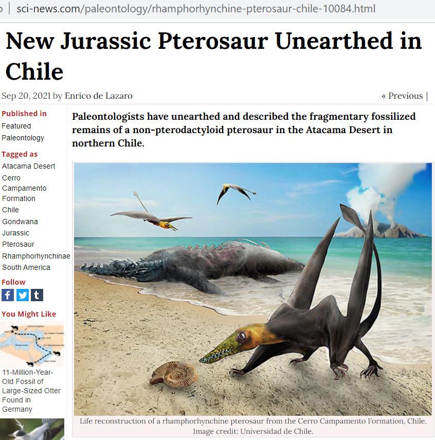 Скриншот из www.sci-news.com/paleontology