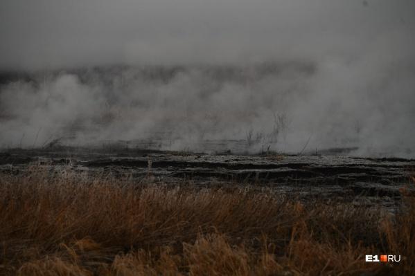 Земля, где горит торфяник, принадлежит московскому бизнесу
