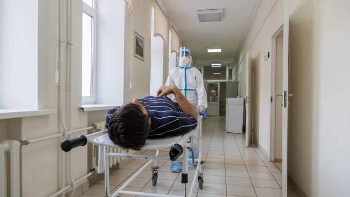 Врачи опубликовали список органов человека, которые поражает коронавирус