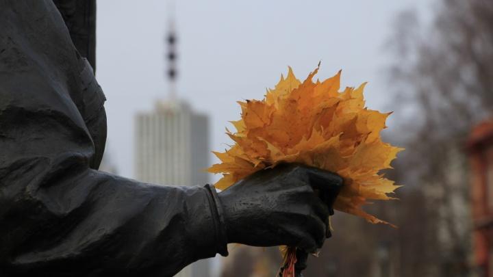 Синоптики ответили, какую погоду ждать в Архангельской области в сентябре