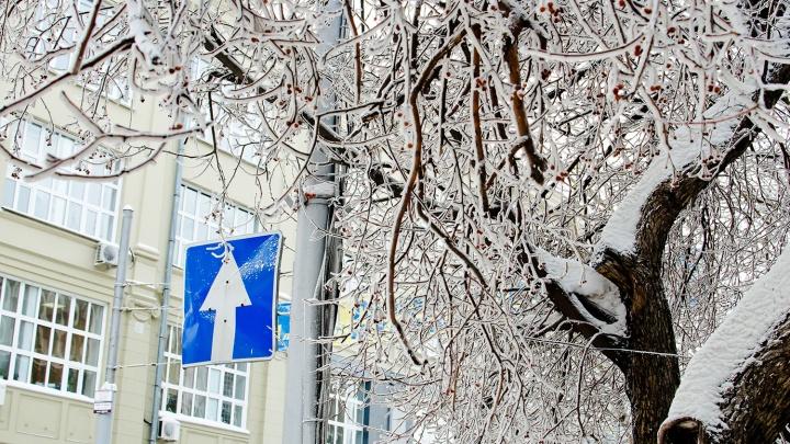 Когда потеплеет? Какой будет погода в ночь перед Рождеством и в оставшиеся дни праздников