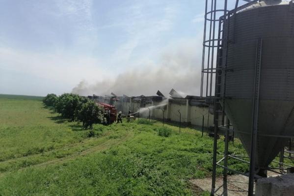 Пожар тушили 17 человек