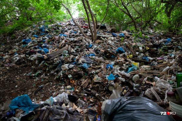 Люди просто сваливали мусор годами