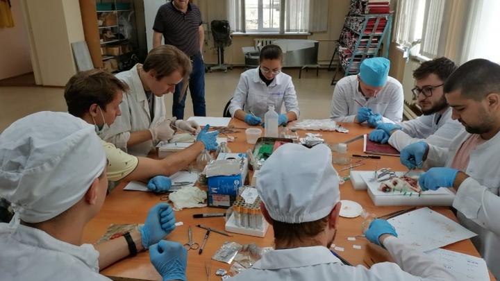 Самый молодой факультет ЧелГУ получил госаккредитацию и готовится открыть новые специальности