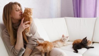 «Саша, подвинься, нам тесно»: хозяйке 29 гигантских котов пришлось им купить отдельную квартиру
