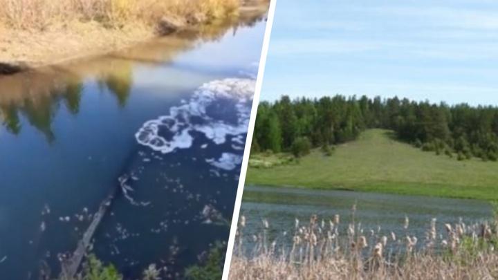 Свинокомплекс заподозрили в загрязнении реки в Красноярском крае
