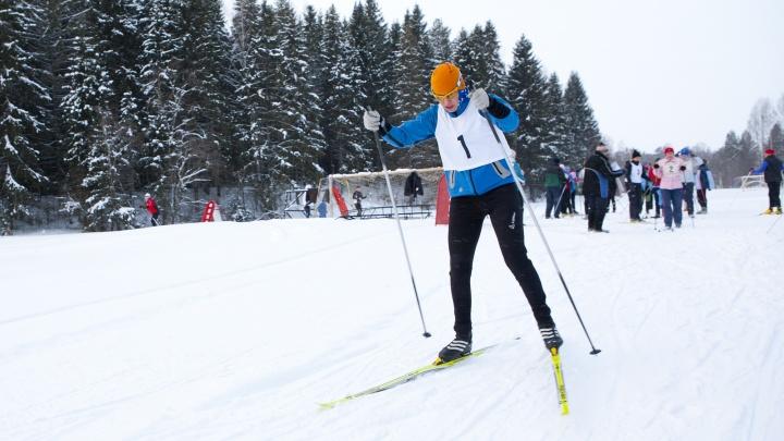 «Будет открыта для всех»: в Ярославской области построят лыжную трассу за 15 миллионов