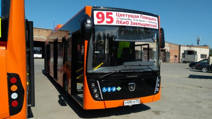 На линию городского маршрута в Новосибирске выходят два ярких оранжевых автобуса