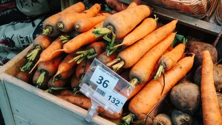 Килограмм моркови в омских магазинах стал стоить дороже евро