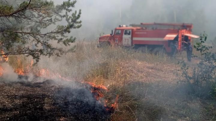 «Пожар его веселил»: спасатели рассказали, как поймали поджигателя лесов в Башкирии