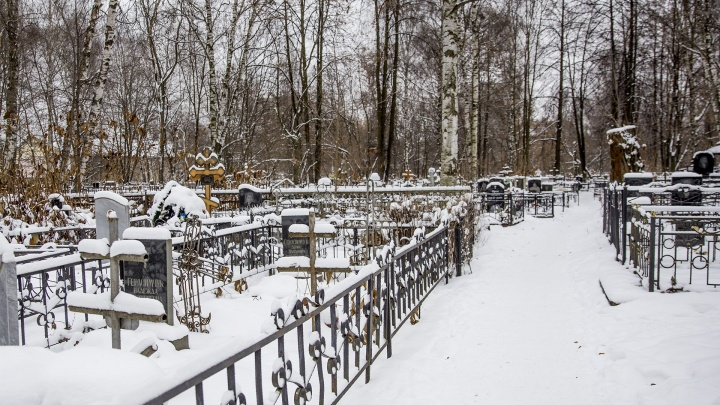 Много нарушений: на директора службы городских кладбищ Ярославля завели административное дело