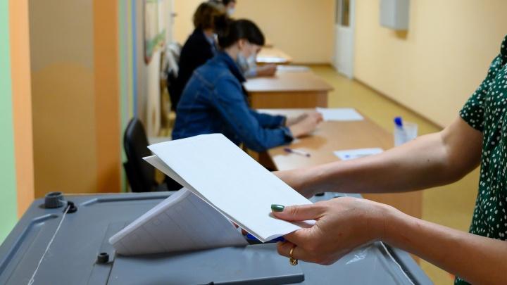 Математик признал «нарисованными» почти половину голосов за «Единую Россию» на Дону