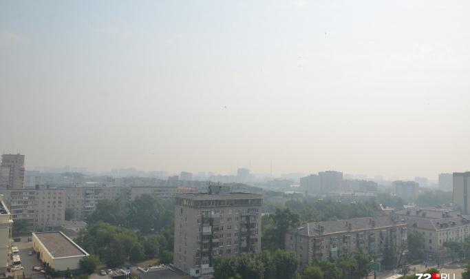 Почти нет городской грязи: ученые РАН назвали Тюмень самым чистым крупным городом России