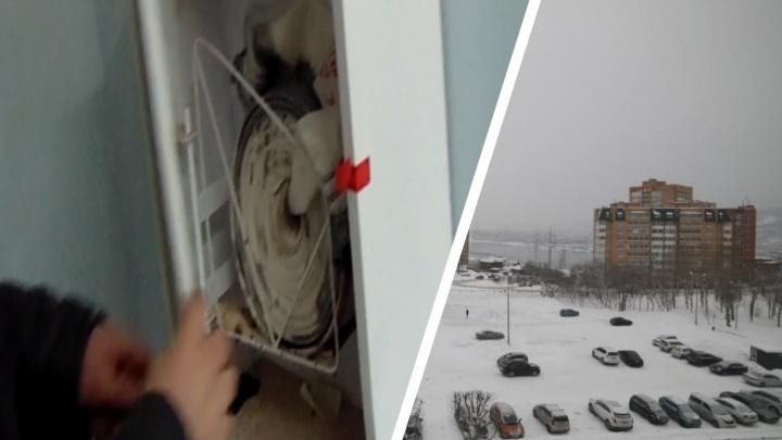 «Там была полная чача»: названа предварительная причина массового отравления людей в Студгородке