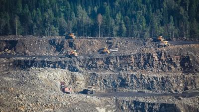 Власти Кузбасса отдали угольному разрезу больше 200тысяч квадратов сельхозземель