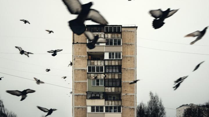 Русская романтика: омич делает минималистичные фотографии окраин и промзон