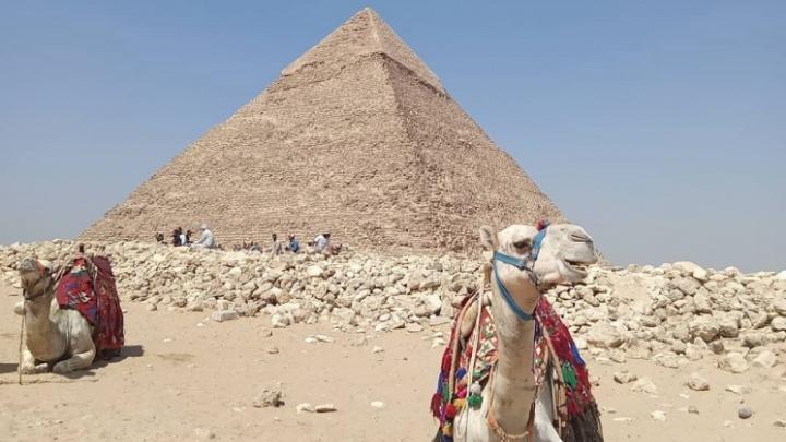 «Это сотни и сотни новых заболевших»: как турагент учила клиента с ковидом обманывать ПЦР-тесты ради поездки в Египет