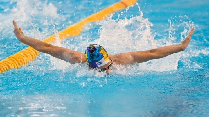 В Прикамье подвели итоги краевого первенства по плаванию на призы губернатора