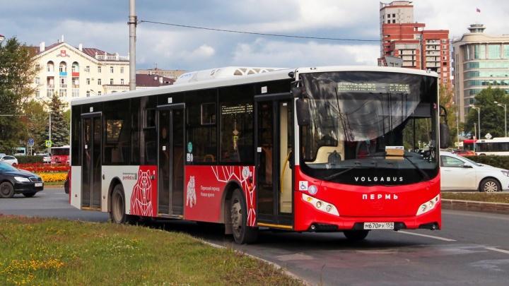 В Перми увеличат количество автобусов на трех маршрутах