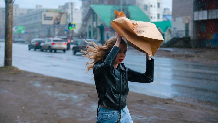 От дождей — к аномальной жаре. Какая погода установится в Архангельской области на выходные