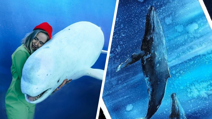 «С китами — релакс»: архангелогородка плавает с морскими обитателями по всему миру и рисует их