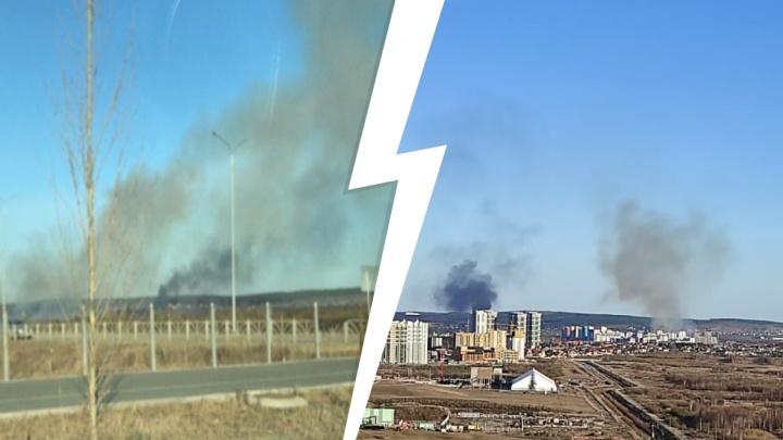 «Один-единственный пожарный»: в Солнечном возле дороги вспыхнул крупный пожар
